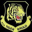 Tiger Brolo