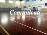 Calcio, Lnd Sicilia Calcio a5: Comunicati