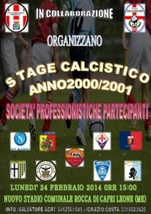 Stage - Copia