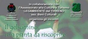 """Legambiente Milazzo, incontro a palazzo D'Amico: """" Il gelsomino una pianta da riscoprire """""""